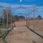 Cage de batting